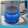 Cast Iron Foot Valve with Screen