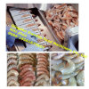 Shrimp Peeling Systems/Shrimp Skin Remove Machine