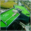 Rooftop Landscape Artificial Synthetic Grass for Household Decoration
