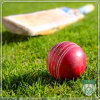 High Density Hard Surface Cricket Field Artificial Synthetic Grass
