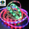 AC110/220V Input RGB SMD3528 LED Flexible Strip (DF3528-60RGB-IP65)