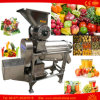 Ginger Juicer Mango Juice Extractor Berry Cold Pressed Maker Machine
