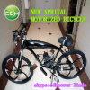 Motorized Bicycle/Racing Bicycle