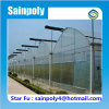 Large Agricultural Multi-Span Film Greenhouse for Flower