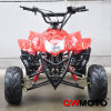 110CC ATV with Lifan Engine (QW-ATV-02A)
