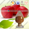 Apple Cider Vinegar Powder Acvp 5% 8% Food Grade