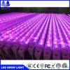 Blue Red Color Tube Grow Light 18W LED Grow Light