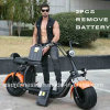 Electric Motor Bike with 2PCS Remove Battery