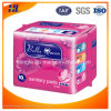 Cheapest Price Factory Own Brand Sanitary Napkin From Quanzhou