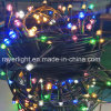 6 Colors Black Wire LED Christmas Lights for Sale