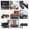 Genuine Leather Livingroom Sofa for Agent (AG002)