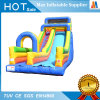 Water Park Inflatable Giant Slide for Sale