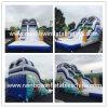 Amazing Moana Inflatable Slide with Pool on Sale