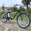2017 Popular City Electric Bicycle Beach E Cycle for USA