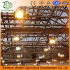 LED Grow Light for Greenhouse and Indoor Plant Flowering Growing