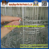 Kraal Network Grassland Fence, Cheap Field Fence
