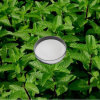 Natural Menthol with Samples Available (CPE-17)