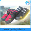 Waterproof Pet Mesh Shoes Best Pet Shoes Dog Boots