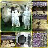 Industrial Vacuum Freeze Dryer for Honey