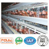 Poultry Farm Layer Chicken Raising Cages