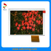 5.0 Inch Color TFT LCD Display, RGB Interface