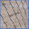 PVC Coated Sport Court Galvanized Steel Chain Link Wire Mesh
