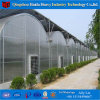 Low Cost China Professional Factory Hydroponic PC Greenhouse Systems