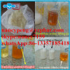 Injectable Anabolic Steroid Trenbolone Acetate 100mg/Ml for Body-Building