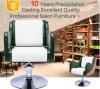 Guangzhou Factory Price Hydraulic Pump Hydraulic Bath Chair