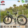 Wholesale Hot Sale Fashion Fat Tire Electric Beach Bike