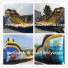 Moana Inflatable Vaina Slide with Pool/ Inflatable Water Slide/Inflatable Slide Inflatable Castle