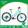 500W 1000W 26 Inch Wheel Hidden Battery Fat Tire Sport City Lady Electric Moped