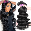 Unprocessed Loose Wave Virgin Brazilian Human Hair