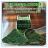 OEM/ODM Available Chlorella Powder