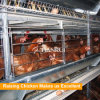 Layer Farm Automatic Chicken Layer Battery Poultry Cage for Kenya