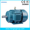 Y2 Cast Iron Three Phase AC Induction Electric Motor