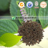 Relaxing Bowels Natural Dried Herbal Medicine Perillaseed