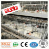 Poultry Farm Chicken Cage System