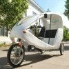 Exquisite Three Wheel Electric Bike