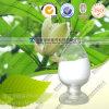 High Quality Pure Natural Ginkgo Biloba Extract Ginkgolide B