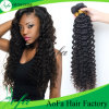 Unprocessed Human Hair Extension Deep Wave Wholesale Virgin Malaysian Hair