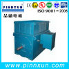 IP55 High Voltage Suqirrel Cage Motor