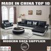 Europe Design Living Room Pure Leather Sofa Furniture (LZ-069)
