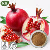 Pure Natural Pomegranate Hull Extract / Ellagic Acid 30%-40%; Polyphenols 40%