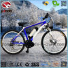 Electric Mountain Bike Sport MTB Bicycle for Sale