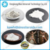 99.9% High Purity Sarms Muscle Growth Powder Cardarine Gw501516 for Fat Loss and Bodybuilding