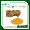 CAS: 481-74-3 Chrysophanic Acid Chrysophanol Powder 99%