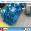 Yz Yzr Series Three Phase Squirrel Cage Electric Motors for Crane
