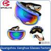 Helmet Compatible Anti-Fog Lens Snowboard Skiing Goggles