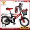 Most Popular and Lovely Children Bicycle/Kids Bike